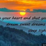 Good Night Quotes   To Make Someone feel Better at Night