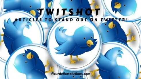 TwitShot Articles to Stand Out on Twitter - fleur de lisa solutions