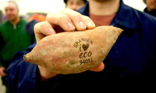 Swedish supermarkets replace sticky labels with laser marking