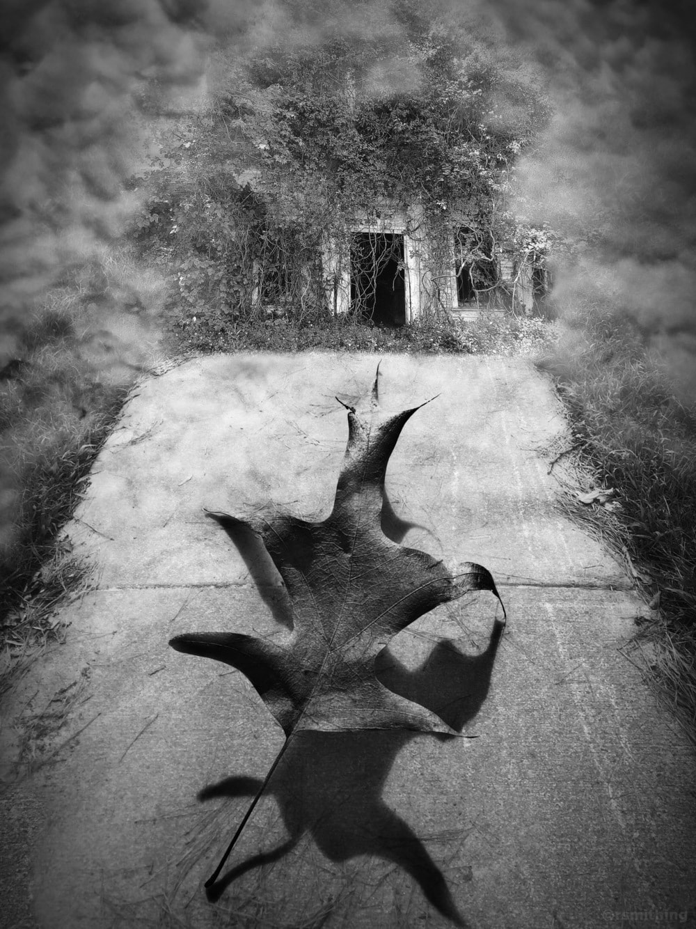 Leaving Home via Richard Smith
