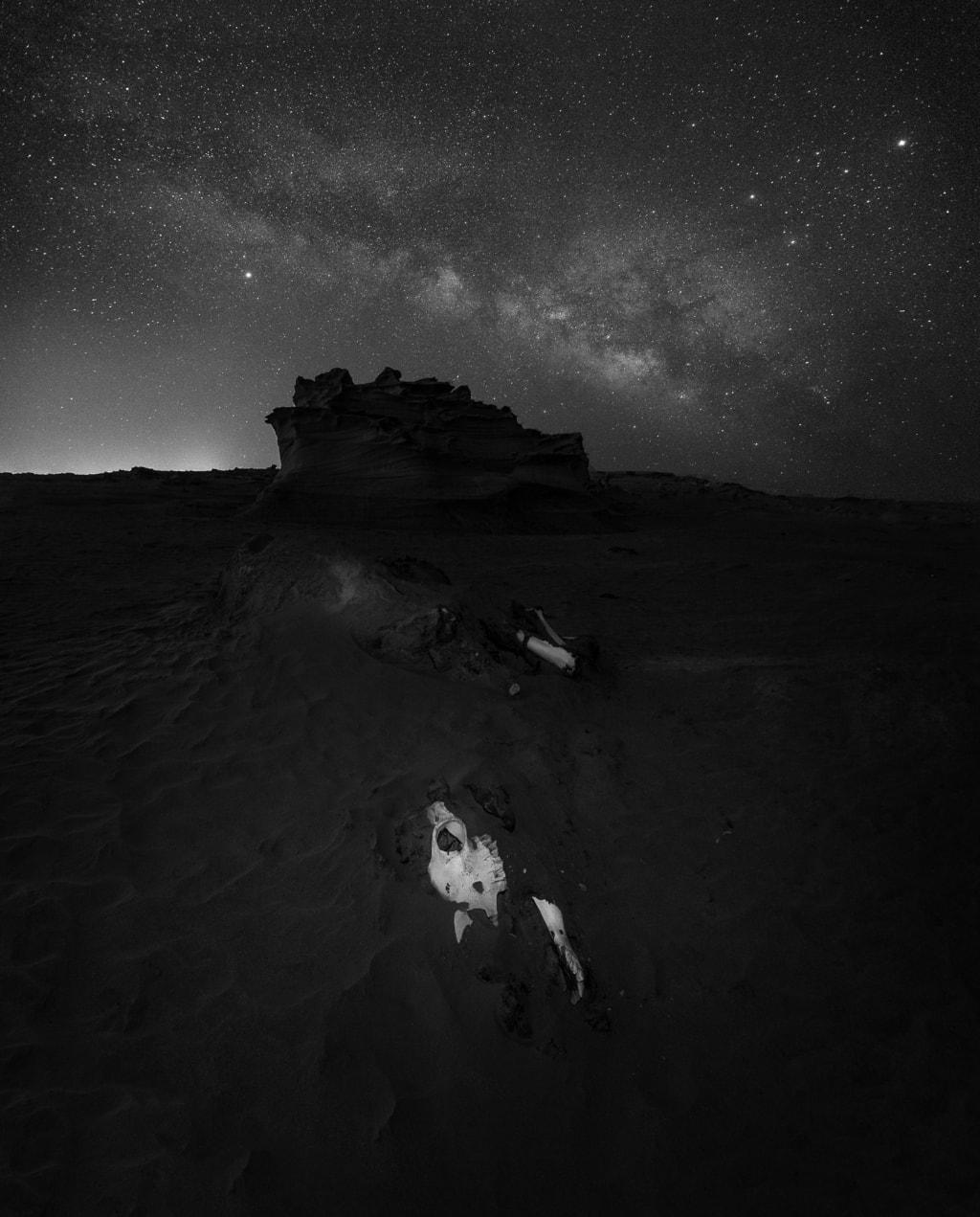 Corpse & Sky via Khalid Jamal Abdullah