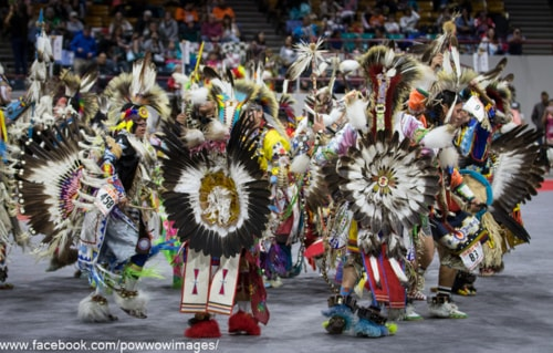 What do you call a whole mess of northern traditional dancer... via David Brown Eyes