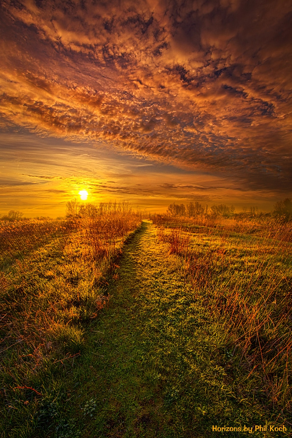 """""""The Way the Truth and the Life""""                                         Wisconsin Horizons By Phil ... via Phil Koch"""