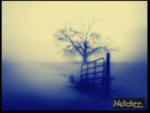 Daybreak via Jolie Buchanan