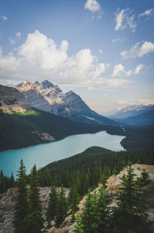 Peyto Lake, Banff NP via Kaila Walton