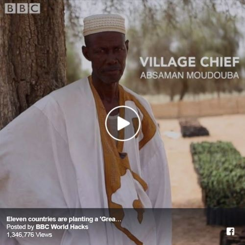 Africa's Great Green Wall                                                                                                                                                    #Sustainability #Nature #Enviro... via Colin Sydes