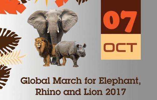 Wildlife Conservation News for 7 Oct 2017 - UK Ivory Ban Spe... via Colin Sydes