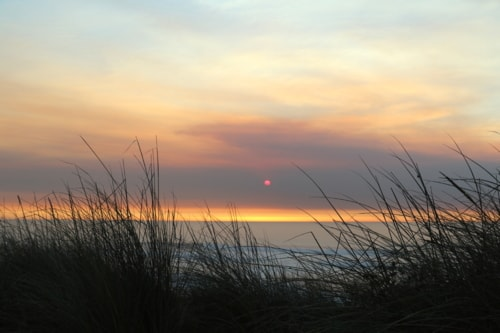 Sunset via Gil Reis