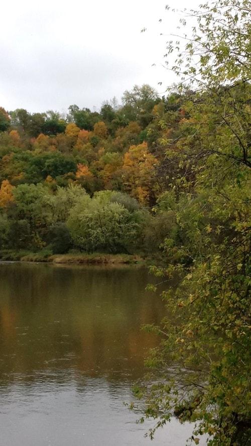 Awww, Quiet Autumn Waters! via Kim Senart
