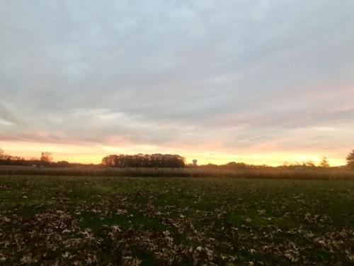 Morning on the last day of November via Steven Hughes