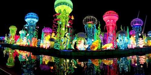 Top 7 attractions in Dubai Garden Glow look amazing, you must visit