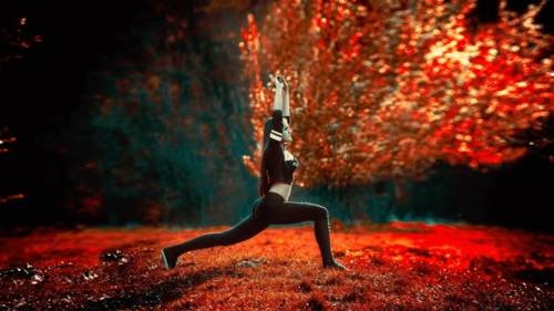 6+ Free Photo Editors To Make Your Images Stand Out From The Crowd