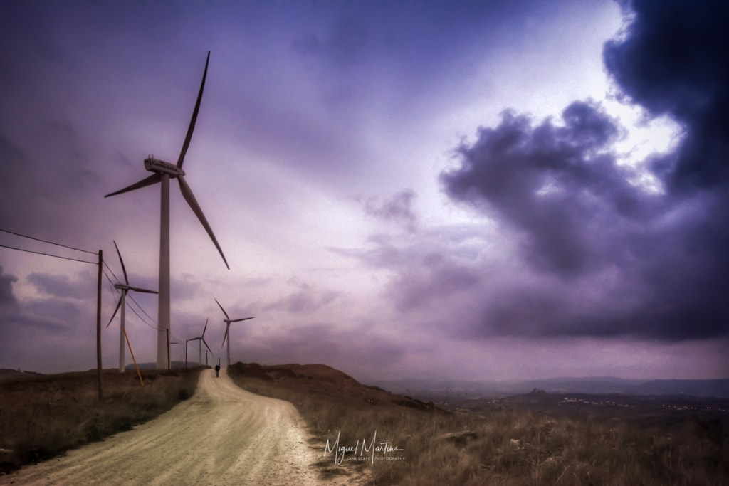 Photo via Miguel Angelo Martins