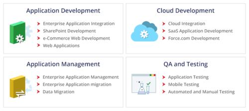 Enterprise Software Development Services