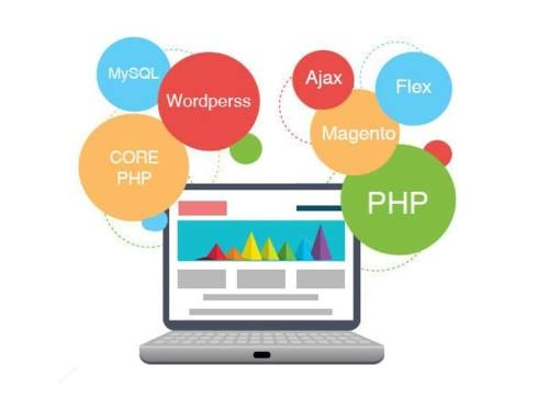 PHP Web Development Company in India | PHP Website Development Services | php developer
