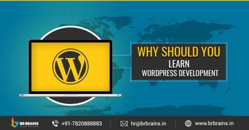 Why Should You Learn WordPress Development - BR Brains