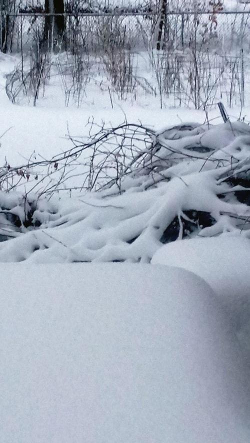 Blanket of Snow via Kim Senart