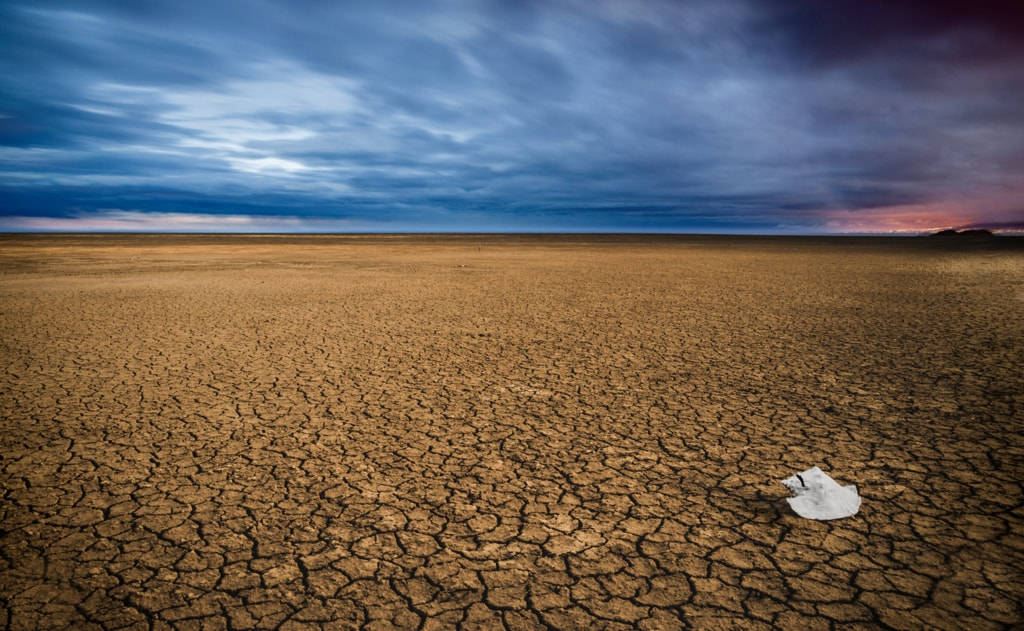 Drought - Landscapes | Through the eyes of Sérgio Gonçallo