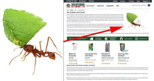 Insect Photographer Sues Pest Control Company for $2.7 Million