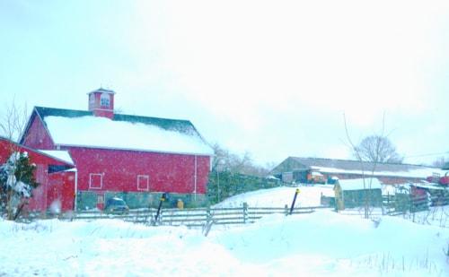 Knowlton Farm via Dirk C. Fecho