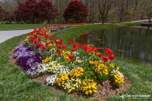 Gibbs Gardens Colors via Liam Douglas - Professional Photographer