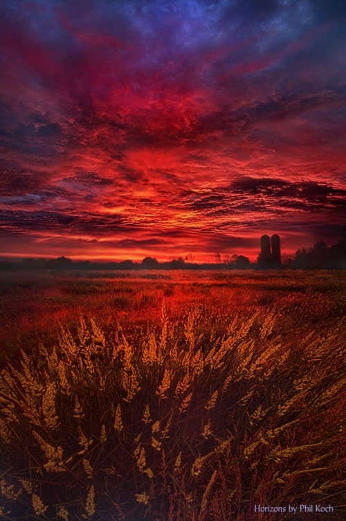 """""""And So The Lion Fell In Love With The Lamb""""                                     Wisconsin Horiz... via Phil Koch"""
