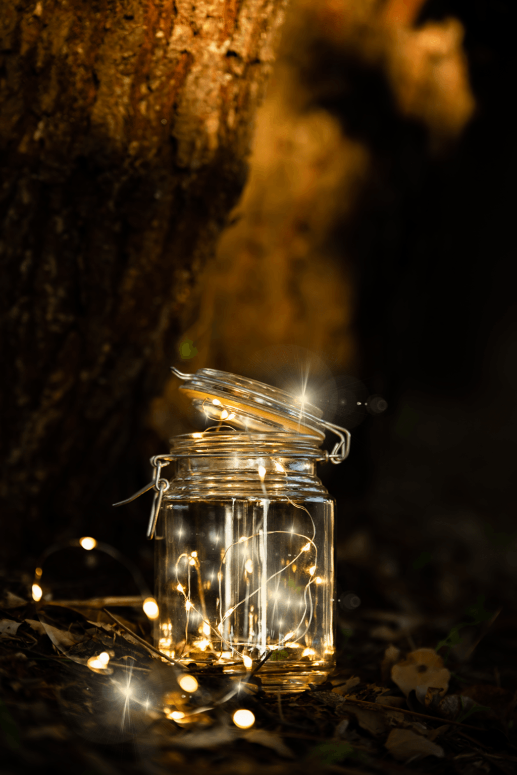 Magic lights via Through the eyes of Sérgio Gonçallo