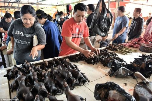 Rat meat via Leo Erwin Garcia