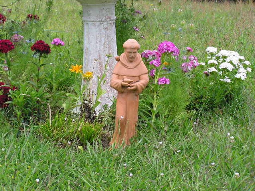 In among the flowers via Luigi Cappel