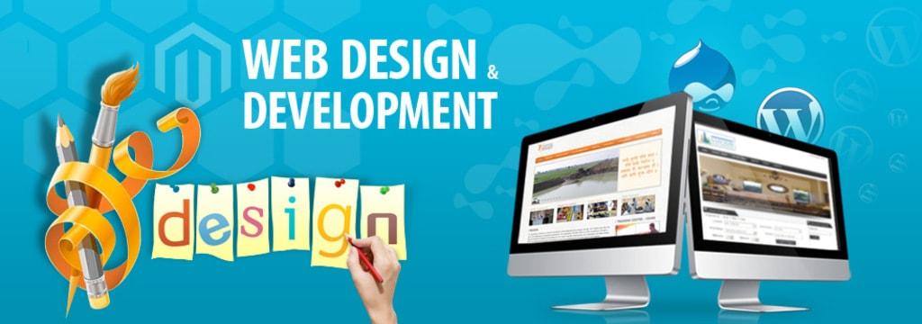 Web Application Development Services via rnaura services
