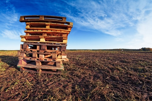 Pile Of Pallets On The Fields via Jukka Heinovirta