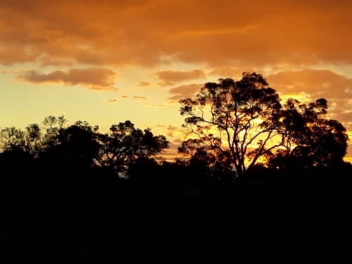 011018 Monday evening sunset magnificence, Byford, Western A... via Mel Shaw