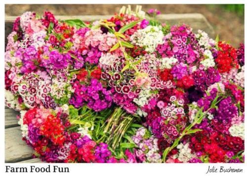 Gathering Fall Flower Bouquets via Jolie Buchanan