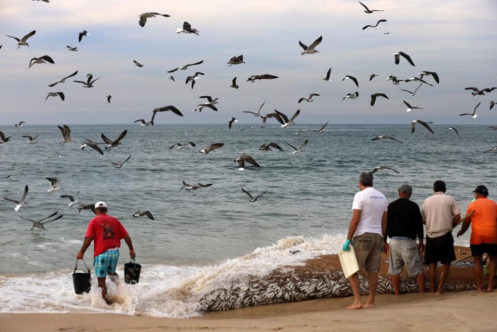 Fishermen via Gil Reis