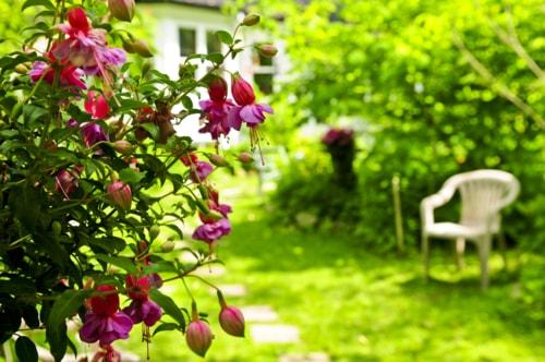 Creative Tips To Help You Capture Stunning Floral Photograph... via Leo Erwin Garcia