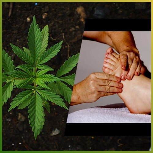 How CBD can be a Curative & Therapeutic Remedy
