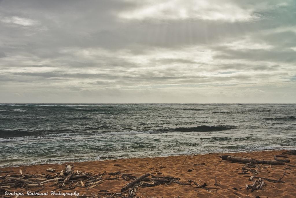 Kauai, Hawaii by Cendrine Marrouat via Cendrine Marrouat