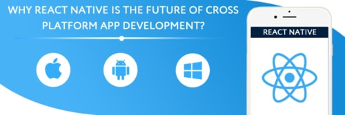 Why You Should Choose React Native for Cross-Platform Develo...