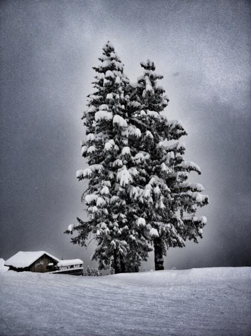 Snow in Austria via Joop Bruurs