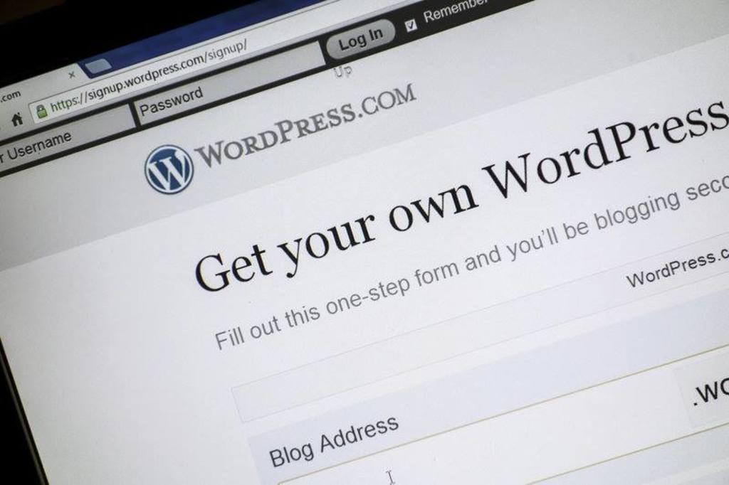 Hire WordPress Developers in New York via Kaylee Gavin