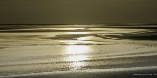 Gold in the Bay via Jean Michel
