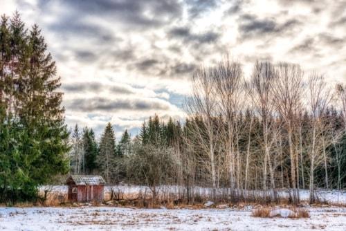 Another fine winterday in Sweden. via Lars-Ove Törnebohm