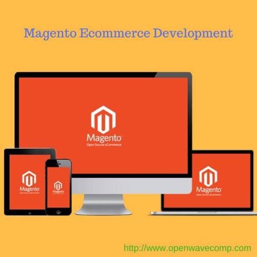 Magento Ecommerce Website Development in New York via Kaylee Gavin