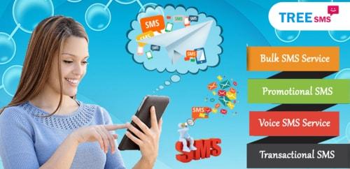 Bulk SMS Service Provider in Uttarakhand via Tree Multisoft