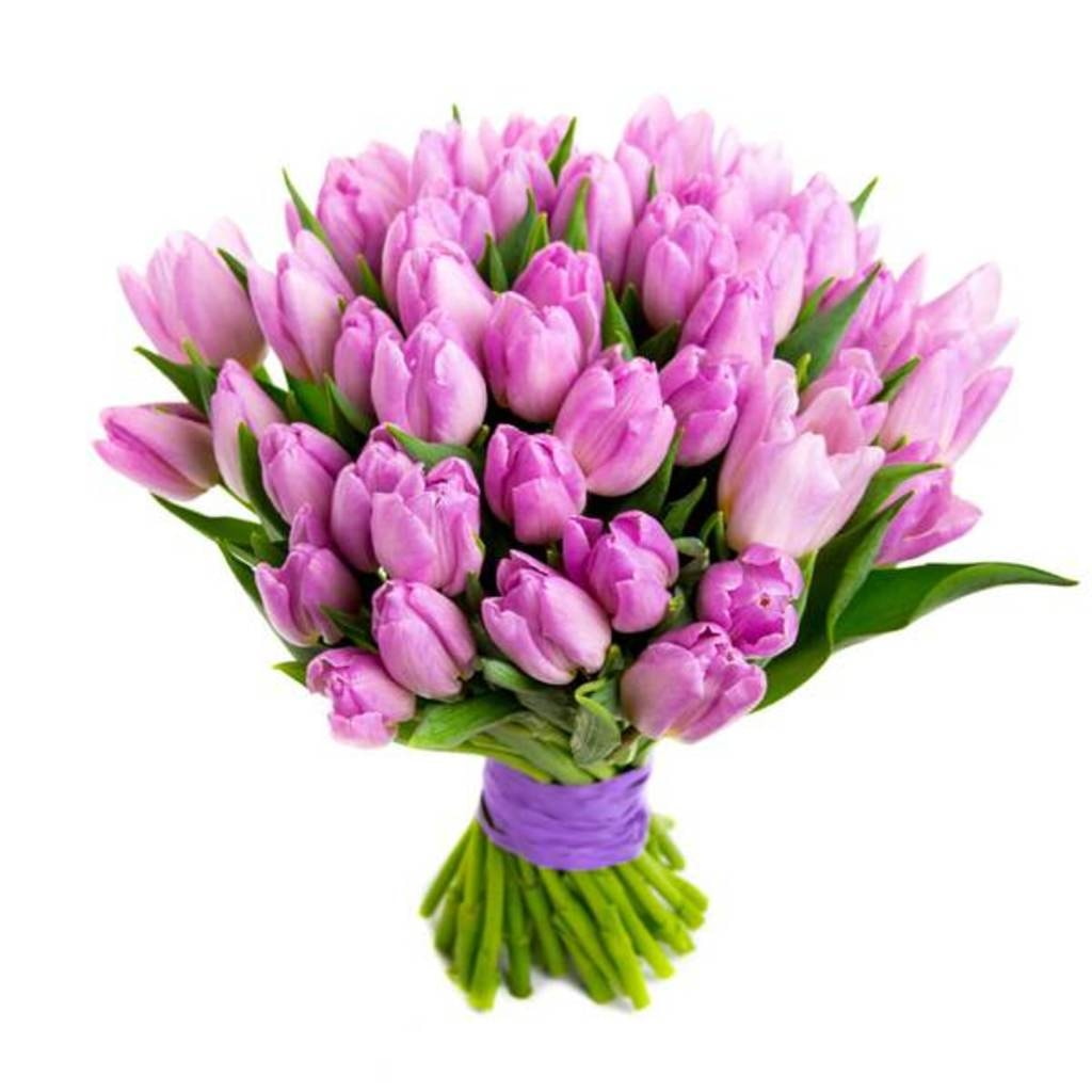 OyeGifts - Send Flowers Online To Lucknow via Reena Singh