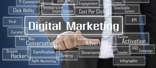 Digital Marketing Company - Raven DigiMark