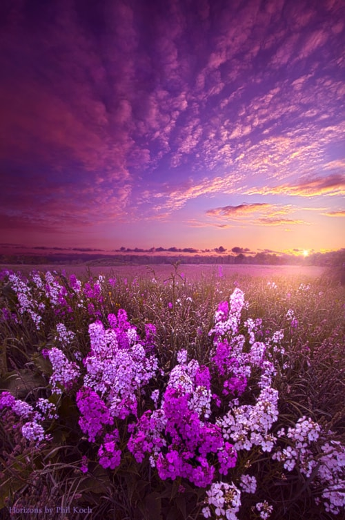 """""""Even Now and Until Then""""                                     Wisconsin Horizons by Phil Koch, t... via Phil Koch"""