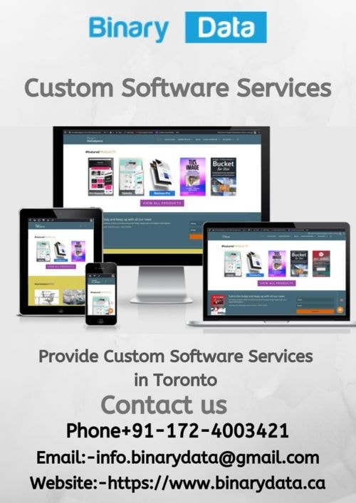 Provide The Best  Custom Software Services in Toronto , Cana... via Binary Data Pvt Ltd