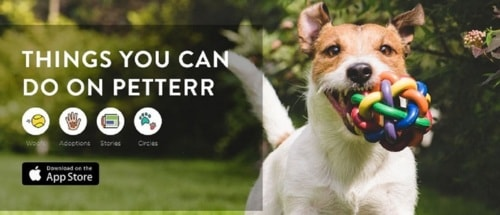Worry less with Petterr as we provide you the best Pet Groom... via Petterr Pet Services