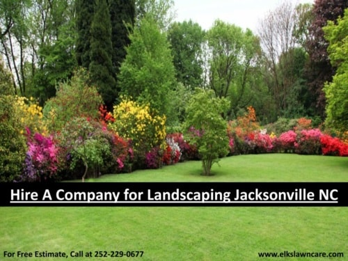 Hire a Company for Landscaping Jacksonville NC